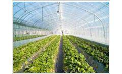 Nursery & Greenhouse Management Software