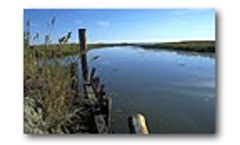 Ecosystem Restoration - Planning, Design and Construction Services