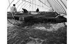 BRA - Recirculating aquaculture systems (RAS)