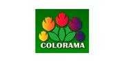 Colorama Wholesale Nursery