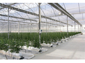 In-Greenhouse Heating System