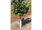 Adapt8 - Tree Guards