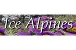 Ice Alpines