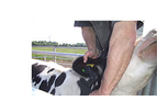 Animal Identification and Tissue Sampling Services