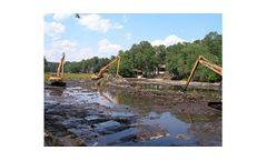Site Remediation / Wetlands Services