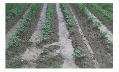 Erosion and Sediment Control Services