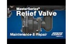 FEBCO MasterSeries Relief Valve Maintenance & Repair  Video