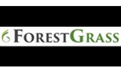 Worldwide Trends in the Artificial Grass Market