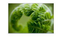 NEPA / CEQA for Environmental Assessments (EAs)