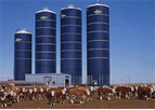 Feed Storage Structure