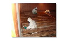 Microbial Remediation - Mold Abatement - Removal Services