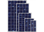 Power Blessed - Poly-Crystalline Solar PV Modules