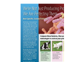 Direct Feed Microbials or Probiotics