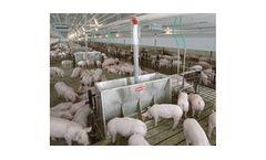 Chore-Time - Dry Pig Feeding Systems