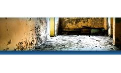 Mould Assessment and Water Damage Services