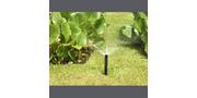 Garden Sprays