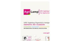 Pigs Lightning Brochure