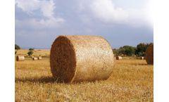 Terry-Agri - Bale net wrap