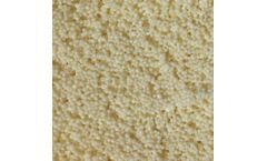 ResinTech - Model SIR-100-HP - Chloride Form Macroporous Nitrate Selective Strong Base Anion Resin