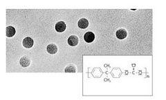 Sartorius - Model 0.8 µm / 25 mm Discs - Polycarbonate Track-Etched Membrane Filters