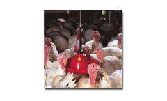 Plasson - Adult Turkey Drinker Systems