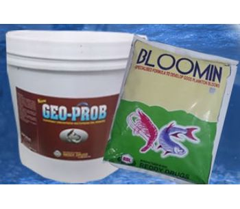 RDL - Model Bloomin - For Water Management