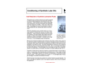 Conditioning of Synthetic Lube Oils Brochure