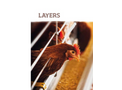 Layers Product - Brochure