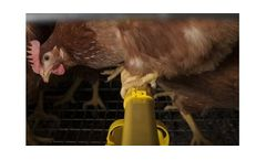 Model Plus 64, 78 & 94 - Laying Hen Housing Systems
