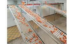 Lubing - Rod Conveyor for Egg Collection