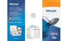 EfferCept - Brochure
