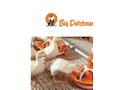 BD Plastic Slat - Brochure