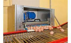 EggTrax - Egg Belt Drive