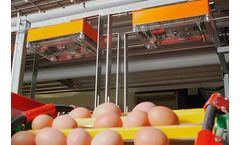EggCam - Poultry Egg Counting System