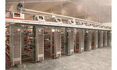 Model ST - Elevator for Egg Collection System