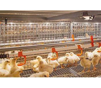 FlexLED - Flexible Tube Lamp - Poultry Production