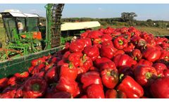 KIT G PepPer - Harvesting Machines - Video