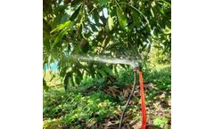 Irrigation Systems Used on Avocados