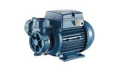 Model CP - Peripheral Positive Displacement Pumps
