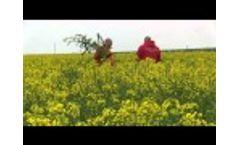 Bioenergy Bulgaria Video