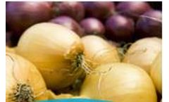 Complete Solutions for Onion Storage