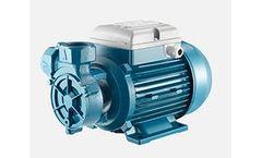 Foras - Model PL - Peripheral Positive Displacement Pumps