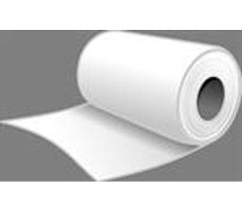 Biodigestor - Pulp & Paper