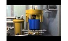 MarineFAST Marine Sanitation Device LX-Series MARPOL Video