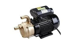 Model JEV302 and JEV311 - Unlined Liquid Ring Electric Pump