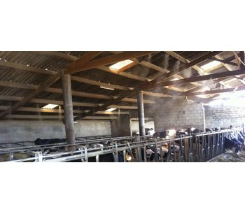 Misting and fogging system for agricultural - Agriculture - Livestock
