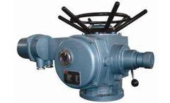 Stoneleigh - Electric Actuator