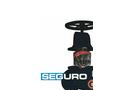 Seguro - Gate Valve Brochure