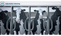 MP Armektron Superb - Cows Milking System by MILKPLAΝ (with Electronic Herd Management) - Video