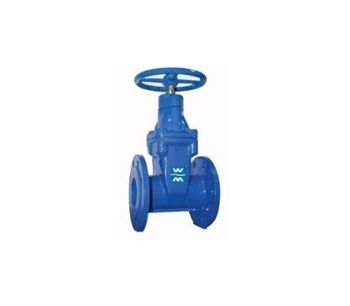 Resilient-Wedge Gate Valve